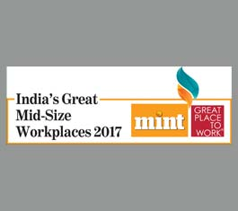 Great Mid Size Workplace 2017